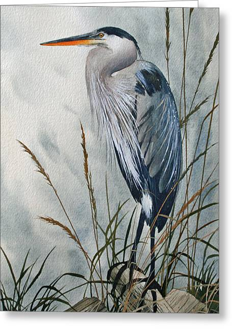 Heron Greeting Card Greeting Cards - Portrait in the Wild Greeting Card by James Williamson