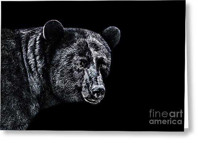 Growling Greeting Cards - Portrait Of A Bear Greeting Card by Milan Karadzic