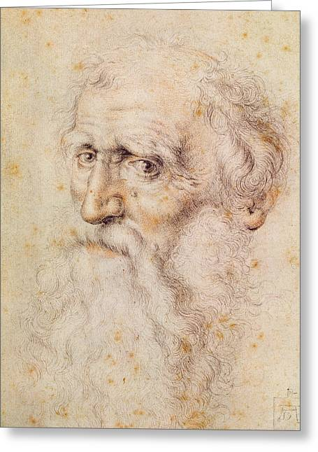 Portrait Of A Bearded Old Man Greeting Card by Albrecht Durer or Duerer