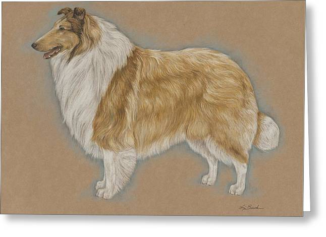 Collie Pastels Greeting Cards - Portrait of a Collie Greeting Card by Ann Johnston