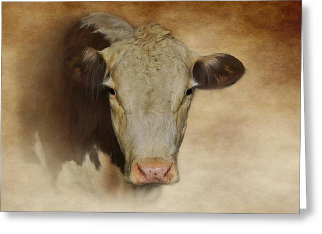 Eyelash Greeting Cards - Portrait Of A Cow Greeting Card by Stephanie Calhoun