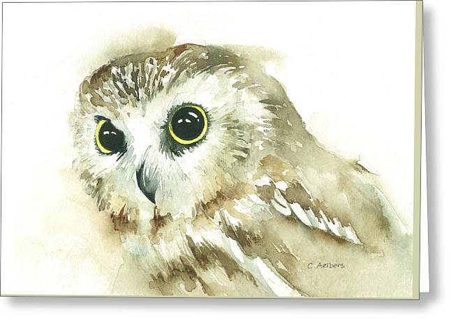 Saw Greeting Cards - Portrait of a Northern Saw-Whet Owl Greeting Card by Corinne Aelbers