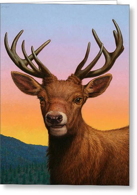 Red Deer Greeting Cards - Portrait of a Red Deer Greeting Card by James W Johnson
