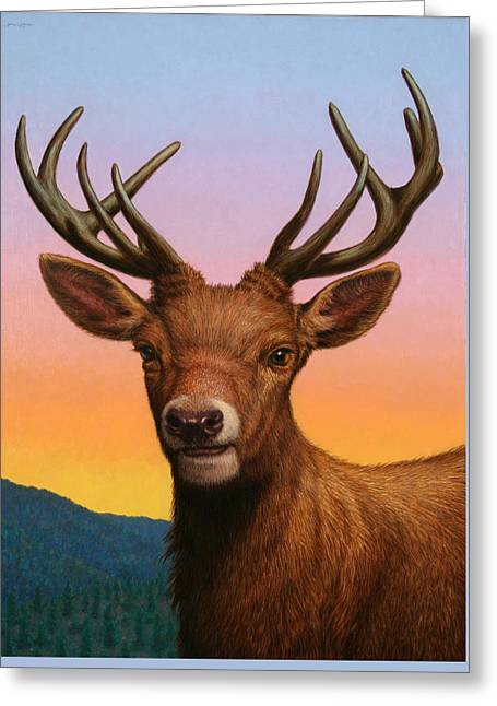 Portrait Of A Red Deer Greeting Card by James W Johnson
