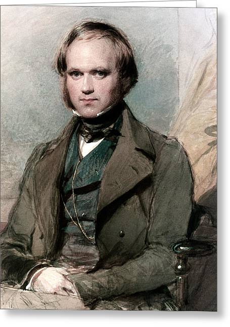 Science Pastels Greeting Cards - Portrait of Charles Darwin Greeting Card by George Richmond