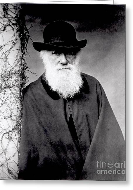 White Beard Photographs Greeting Cards - Portrait of Charles Darwin Greeting Card by Julia Margaret Cameron