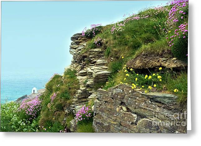 Portreath Cliffs North Cornwall Greeting Card by Terri Waters