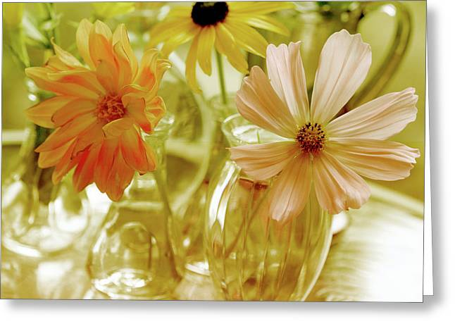 Glass Vase Greeting Cards - Posies Greeting Card by Bonnie Bruno