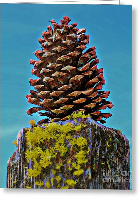 Purchase Greeting Cards - Posted Pinecone Greeting Card by Patrick Witz