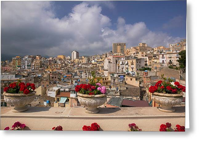 Ledge Greeting Cards - Potted Plants On The Ledge Greeting Card by Panoramic Images