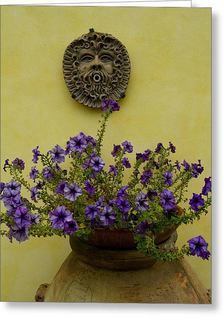 Chianti Greeting Cards - Potted Purple Petunias On A Wooden Greeting Card by Todd Gipstein