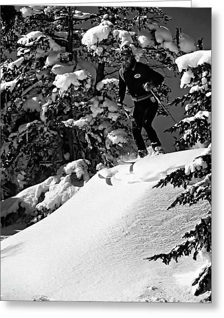 Powder Snow Greeting Cards - Powder Hound bw version Greeting Card by Steve Harrington