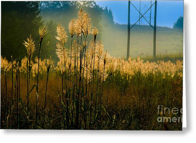 Lines Tapestries - Textiles Greeting Cards - Powerline Sunrise Greeting Card by James Hennis