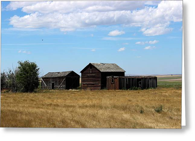 Sheds Greeting Cards - Prairie Farm Buildings Greeting Card by Dale Mark
