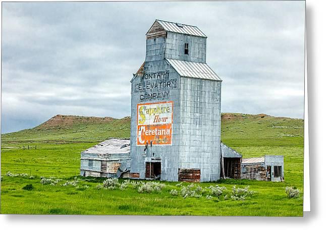 Prairie Sentinel Greeting Card by Todd Klassy