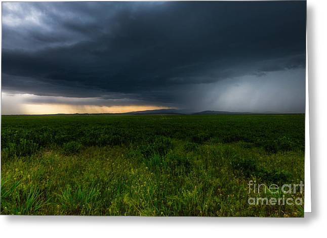 Prairie Storm Greeting Card by Jamie Tipton