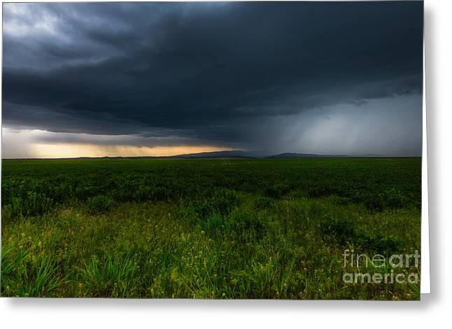 Lewistown Greeting Cards - Prairie Storm Greeting Card by Jamie Tipton