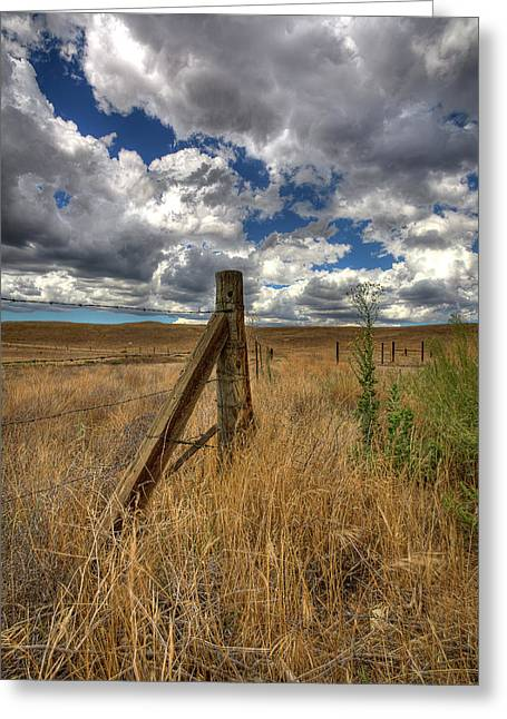 Barbs Greeting Cards - Prarie Sky Greeting Card by Peter Tellone