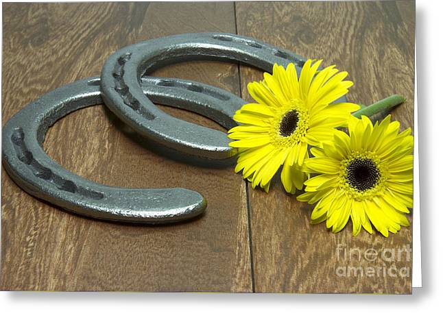 Preakness Stakes Greeting Cards - Preakness Stakes Black Eyed Susans with Horseshoes on Wood Greeting Card by Karen Foley