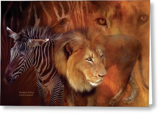 Prints Of Zebras Greeting Cards - Predator and Prey Greeting Card by Carol Cavalaris