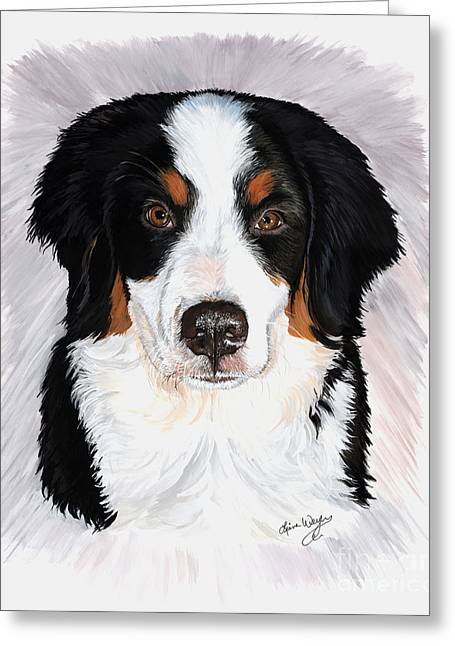 Bernese Mountain Dog Greeting Cards - Presley Greeting Card by Liane Weyers