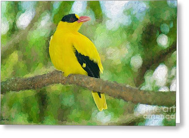 Birds Greeting Cards - Pretty Bird Edition 2 Greeting Card by Judy Kay