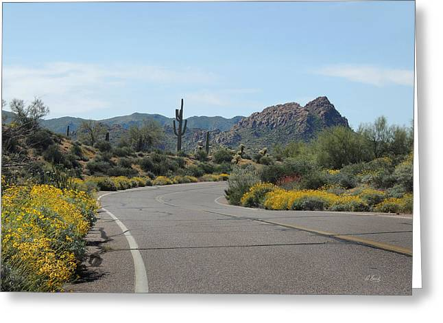 Cave Creek Western Greeting Cards - Pretty Curve Greeting Card by Gordon Beck