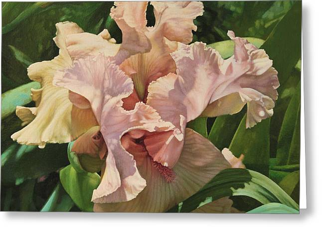 Photo-realism Greeting Cards - Pretty in Pink Iris Greeting Card by Susan Buczak