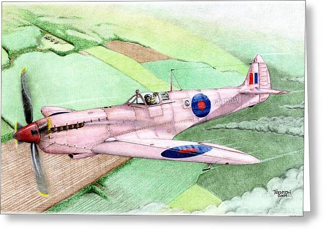 Spitfire Drawings Greeting Cards - Pretty In Pink Greeting Card by Trenton Hill