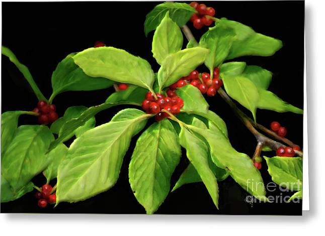 Pretty Little Red Berries Greeting Card by Lois Bryan
