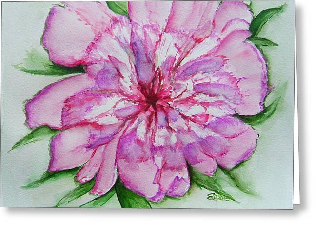 Pinks And Purple Petals Greeting Cards - Pretty Peony Greeting Card by Elaine Duras