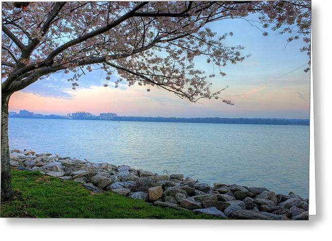 Pretty Potomac Greeting Card by JC Findley