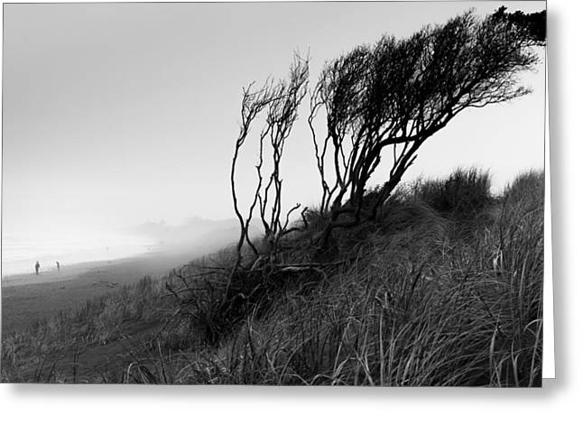 Raining Greeting Cards - Prevailing Wind Greeting Card by David Vale