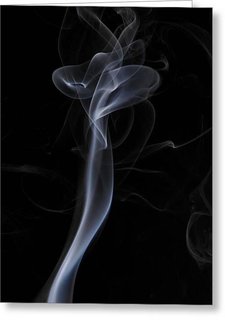 Smoke Art Greeting Cards - Preying Mantis Greeting Card by Bryan Steffy