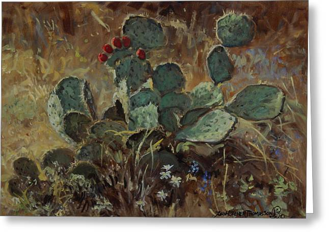 Impressionist Greeting Cards - Prickly Pear Greeting Card by John Thomasson