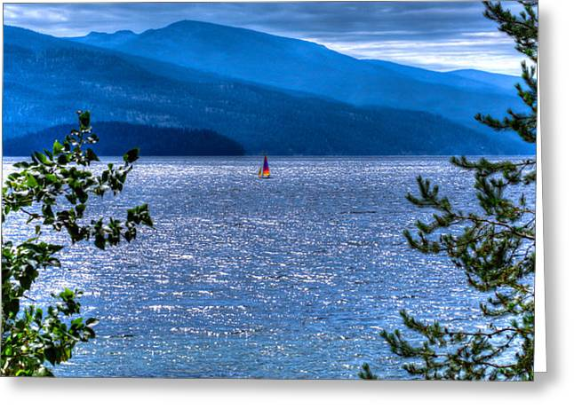 Priest Lake Solitude Greeting Card by David Patterson