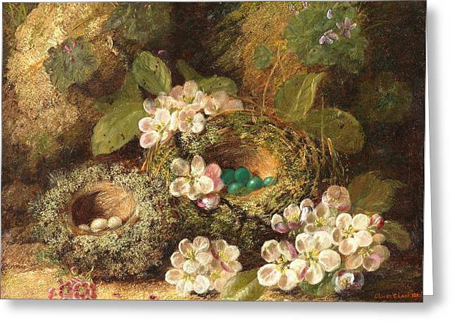Primroses and Bird's Nests on a Mossy Bank Greeting Card by Oliver Clare
