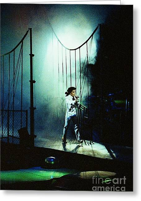 Princes Greeting Cards - Prince-2150 Greeting Card by Gary Gingrich Galleries