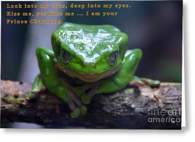 Amphibians Tapestries - Textiles Greeting Cards - Prince Charming Greeting Card by Edna Weber