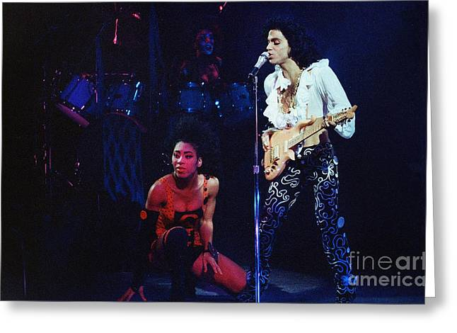 Princes Greeting Cards - Prince n Cat-2148 Greeting Card by Gary Gingrich Galleries