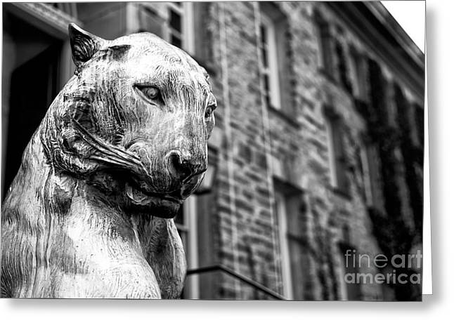 Statue Portrait Photographs Greeting Cards - Princeton Tiger Portrait Greeting Card by John Rizzuto