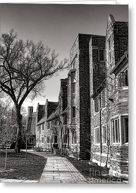 Princeton Greeting Cards - Princeton University 1901 Dorm Hall Greeting Card by Olivier Le Queinec