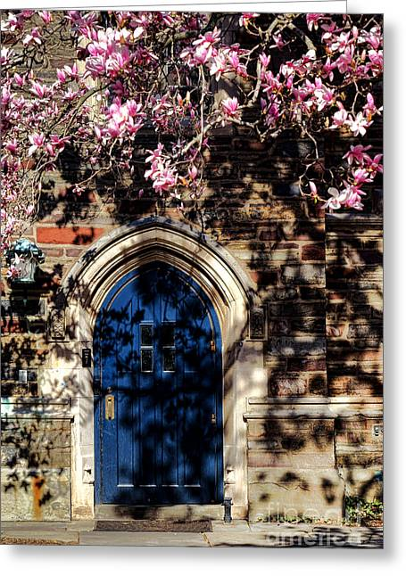 Princeton University Door And Magnolia Greeting Card by Olivier Le Queinec