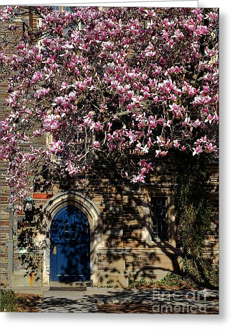Princeton Greeting Cards - Princeton University Magnolia and Door Greeting Card by Olivier Le Queinec