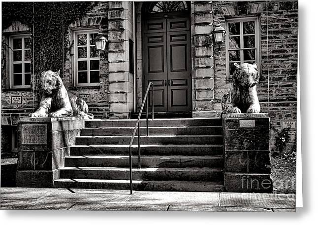 Princeton Greeting Cards - Princeton University Nassau Hall Tigers Greeting Card by Olivier Le Queinec