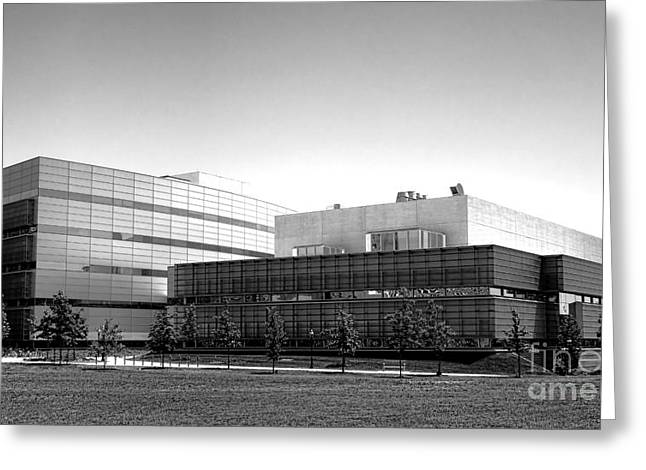 Princeton University Neuroscience Institute And Peretsman Scully Greeting Card by Olivier Le Queinec