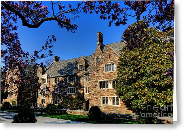 Princeton Greeting Cards - Princeton University Pyne Hall and Trees Greeting Card by Olivier Le Queinec