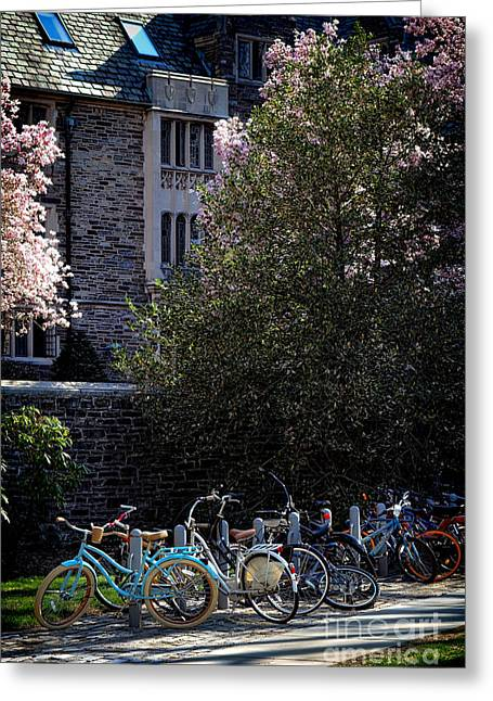 Campus Life Greeting Cards - Princeton University Student Life Greeting Card by Olivier Le Queinec