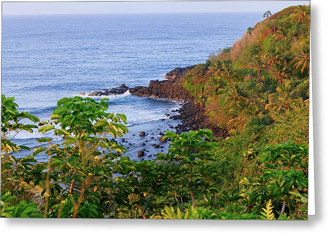 Princeville Kauai Island Landscape 2 Greeting Card by Ariane Moshayedi
