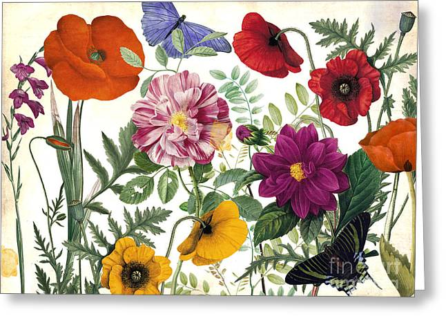 Printemps Garden Greeting Card by Mindy Sommers
